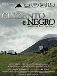 http://static.cm-fafe.pt/camara-municipal-fafe/296/218118/cinzento-e-negro-cartaz.jpg