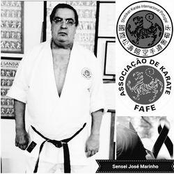 http://static.cm-fafe.pt/camara-municipal-fafe/296/225983/sensei-jose-marinho.jpg