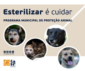 https://static.cm-fafe.pt/camara-municipal-fafe/296/235623/web-protecao-animal-01-postfacebook.png