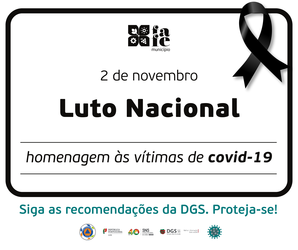 https://static.cm-fafe.pt/camara-municipal-fafe/296/235854/web-covid-19-lutonacional-02.png